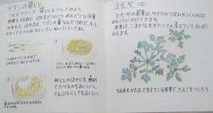 まりちゃん絵本